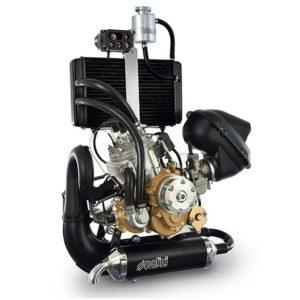 250 dual spark